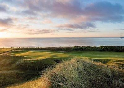 Golf-Gruppenreisen-Dublin-The-Island-GC