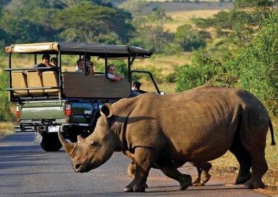 Silvester-Golfreise-Südafrika-Garden-Route-Game-Drive-Fahrt