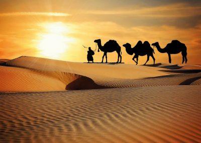 Silvester-Golfreisen-VAE-Abu-Dhabi-Wüstensafari-mit-BBQ-Dinner